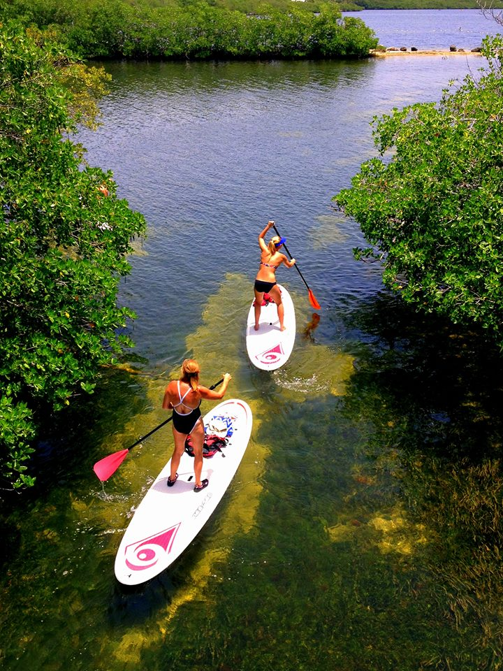 Florida keys to celebrate earth day in dozens of off beat ways for John pennekamp state park cabins